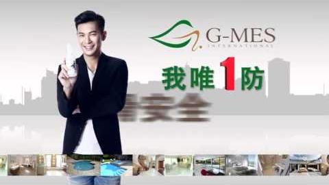 http://www.gmesintl.com/wp-content/uploads/2016/12/gmeseng.mp4